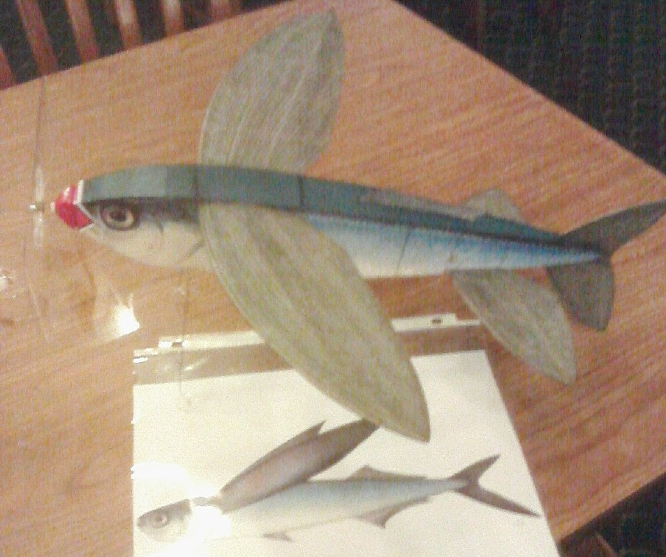 pres bruning flying fish